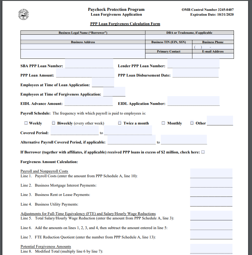 PPP Loan Forgiveness Application Form